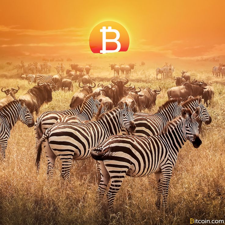 Bitcoin Experiences Rapid Growth and High Trading in Africa - Bitcoin News http://mybtccoin.com/bitcoin-experiences-rapid-growth-africa/