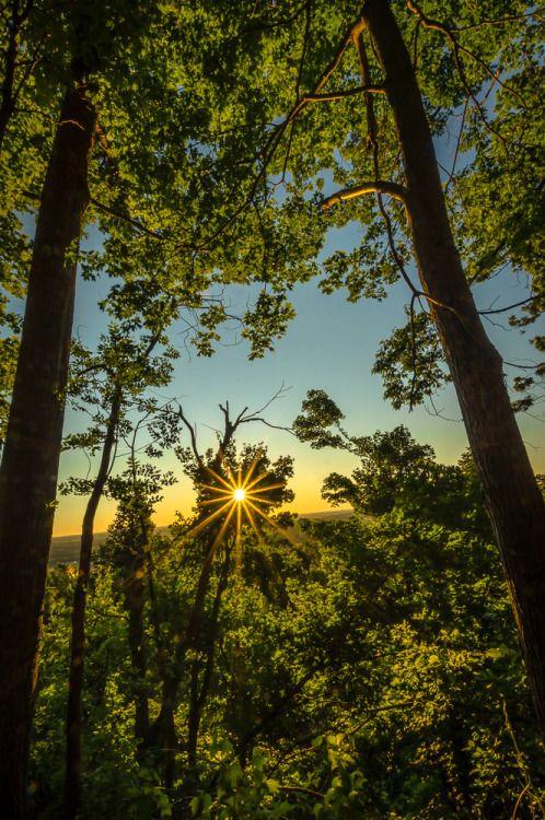 Sunburst: Burlington, Ontario, Canada