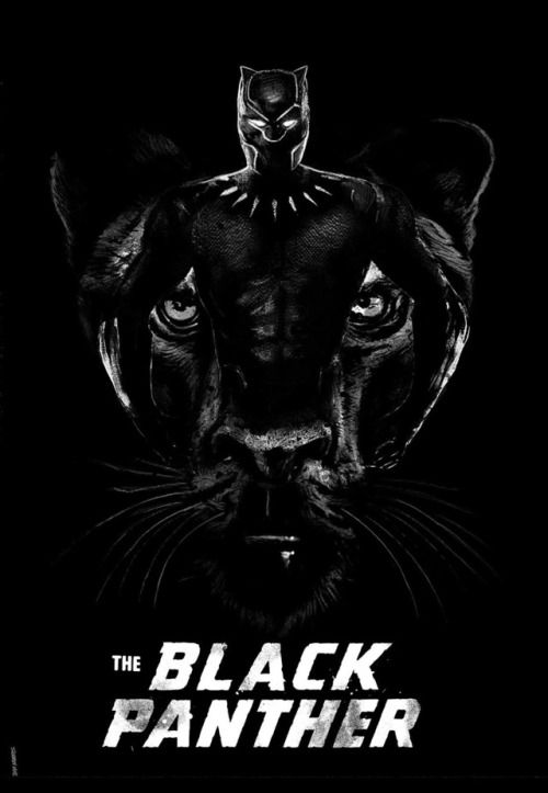The Black Panther - Daniel Norris