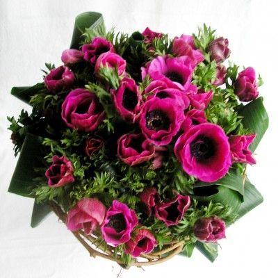 yau flori_buchet de anemone violet