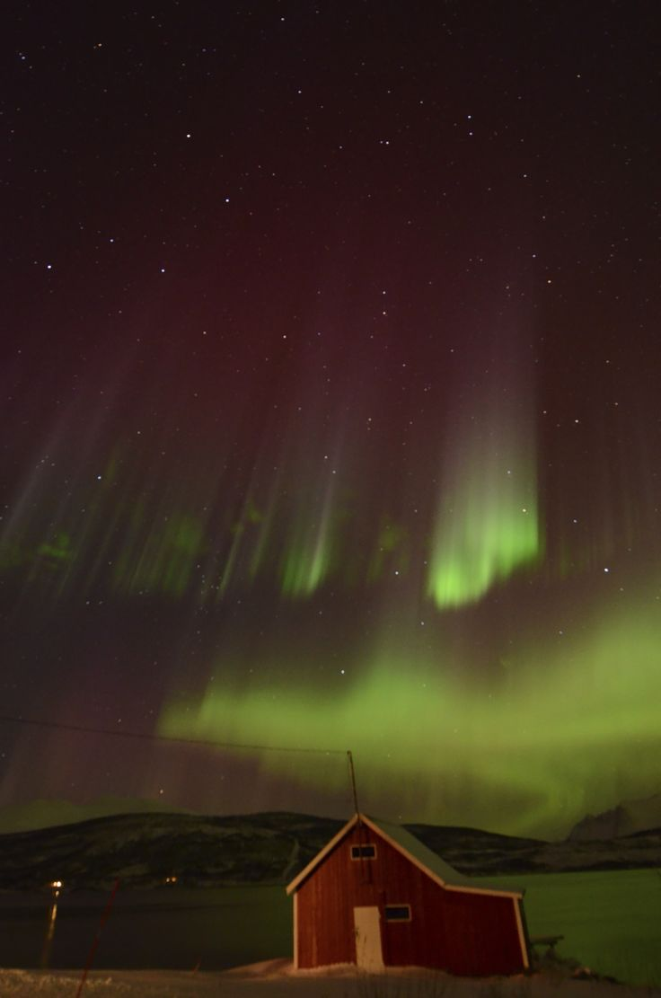 Northern lights at GuideGunnar`s base camp #guidegunnar
