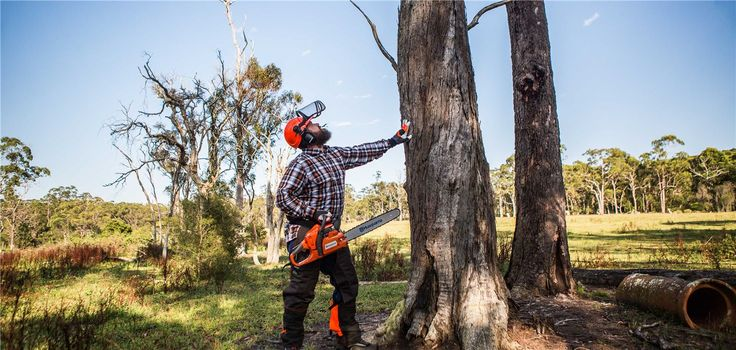 It goes without saying - nature is our priority and mutual concern. Together we have the power to minimise our strain on the environment. Husqvarna Chainsaws are all equipped with the unique X-TORQ® engine which make them less fuel consuming while also reducing the exhaust emission levels in accordance with the world's most stringent emissions regulations.