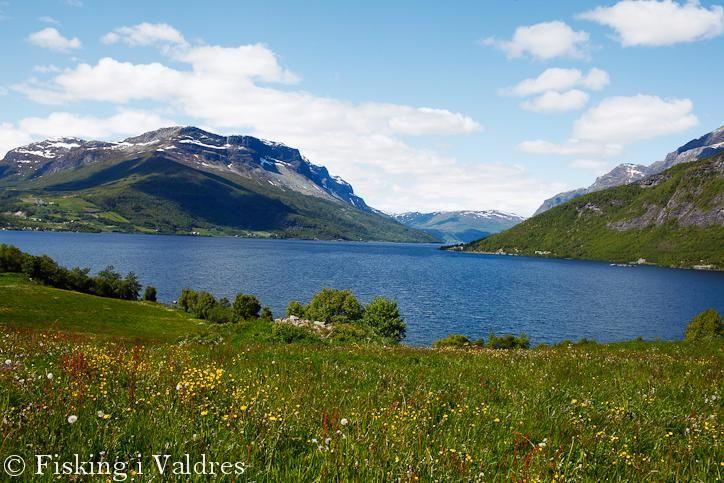 Valdres, Norway. www.inatur.no/fiske/50ed9e27e4b0eb579d78a2b4/felleskortet-fisking-i-valdres | Inatur.no