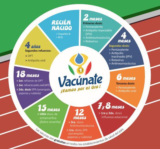 Calendario vacunal Perú