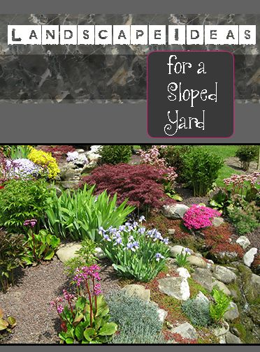 I love this!  I have a sloped yard and it's so hard to decide what to do with it!  Landscape Ideas for a sloped yard.