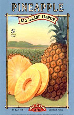 #Vintage Hawaiian Pineapple AD Poster 1920's | eBay      http://wp.me/p291tj-8N