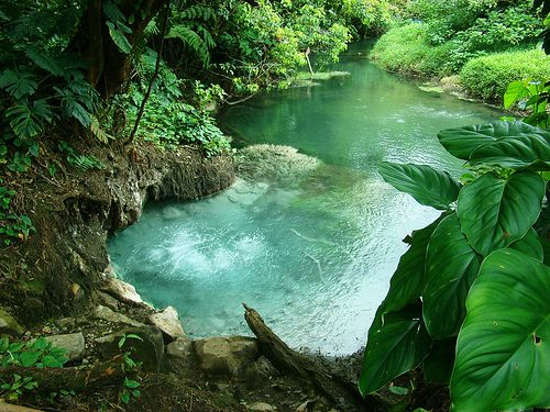 Hot Springs Of Costa Rica Places I Want To Go Pinterest And