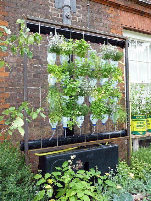 herb garden irrigation - Google Search