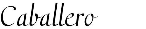 30 Best Cursive Fonts