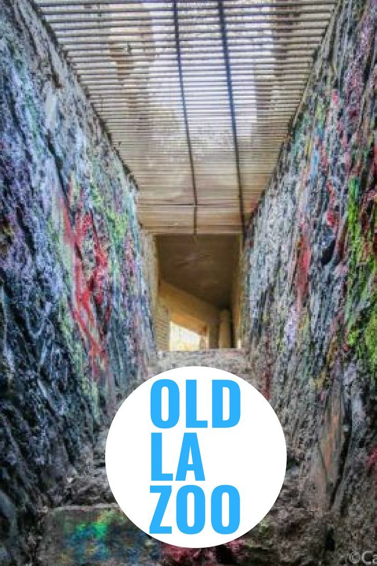 The Old La Zoo Officially Known As The Griffith Park Zoo Was Built Under Dubious Circumstances And It S Ruins Rema Los Angeles Zoo Ghost Towns Griffith Park