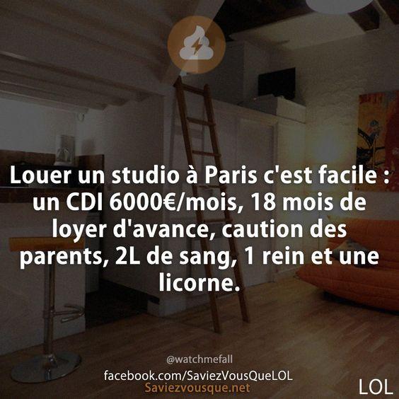 Louer un studio à Paris c'est facile : un CDI 6000€/mois, 18 mois de loyer d'avance, caution des parents, 2L de sang, 1 rein et une licorne. | Saviez-vous que ?