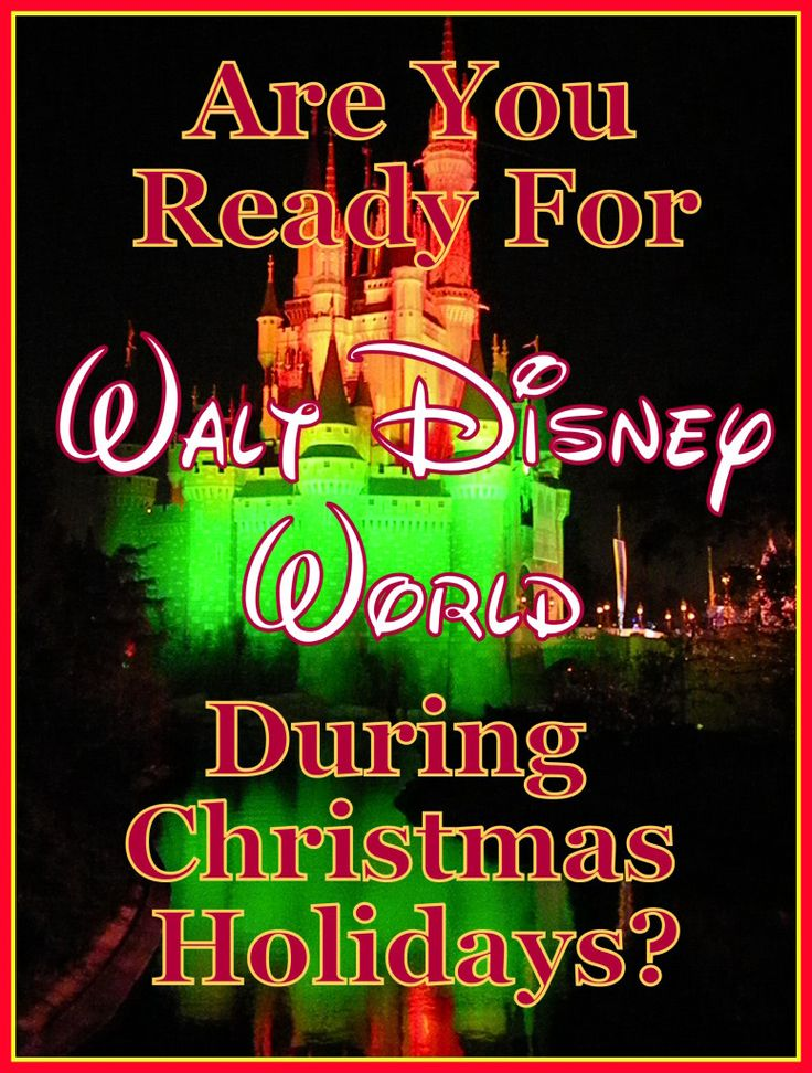 Are you crazy enough to go to Disney World during the week after Christmas?!! (planning article)