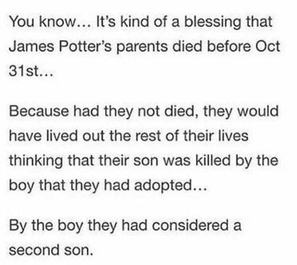 Except there is no way they would have let him be imprisoned without trial, and they would have fought to the death to get custody of Harry.