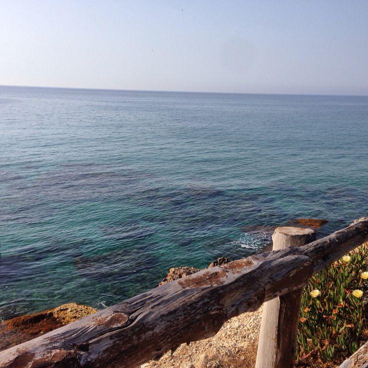 Alevkaya Restaurant view Karpaz north Cyprus photo by @Mey1976