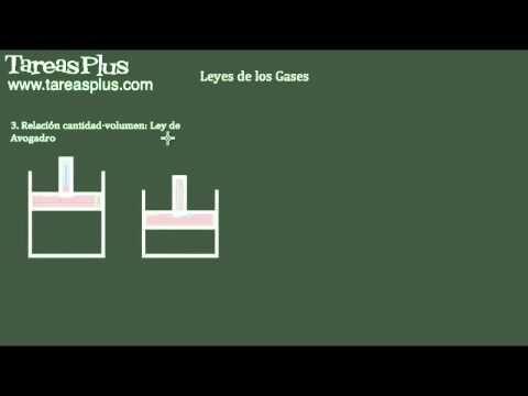 Leyes de los gases, Ley de Boyle, ley de Charles y ley Avogadro
