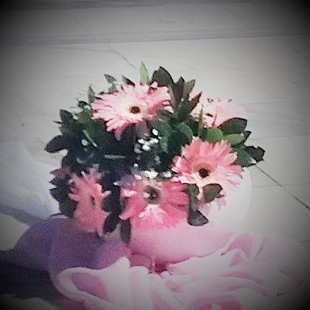 Χεροποίητο κασπώ από γύψο με ζερμπερες  Art creation by MONEOY Flowers