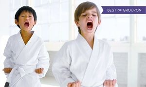 Groupon - 10 or 20 Classes with Initiation and Uniform at Kids Love Martial Arts (Up to 90% Off) in Meadows At Chandler Creek. Groupon deal price: $21