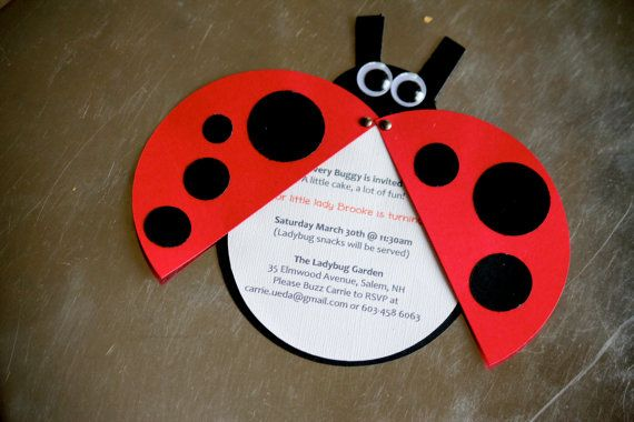 12 Cute as a Lady Bug Invitations, Garden Party, Ladybugs, First Year Photo Banner on Etsy, $24.00