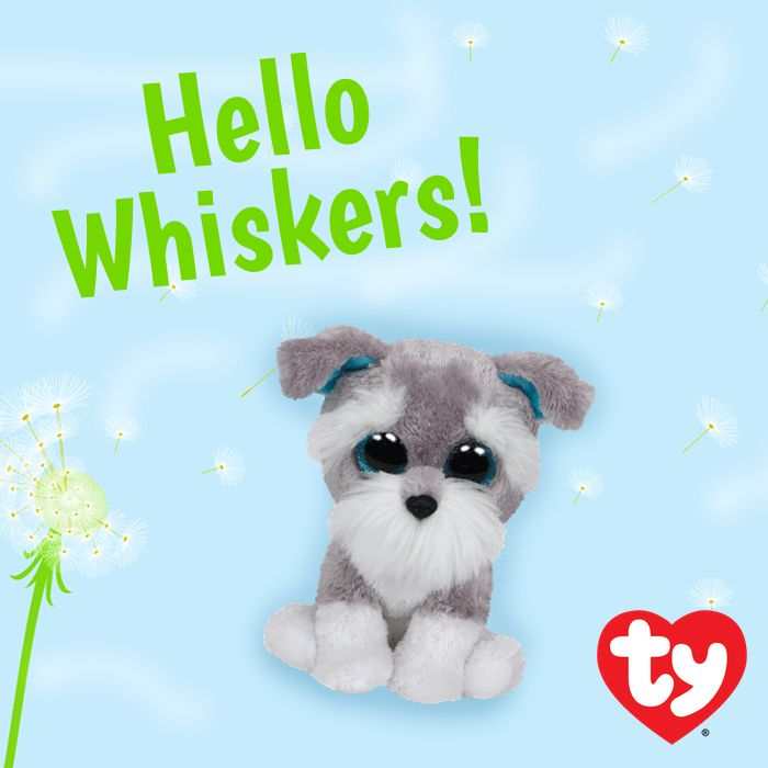 Welcome to the Beanie Boo family, Whiskers!