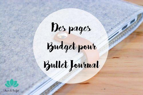 On voit bien que la rentrée inspire la blogosphère, tout le monde ne parle que du bullet journal. Voici donc quelques pages budget spéciales bullet journal.