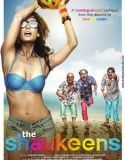 The Shaukeens izle