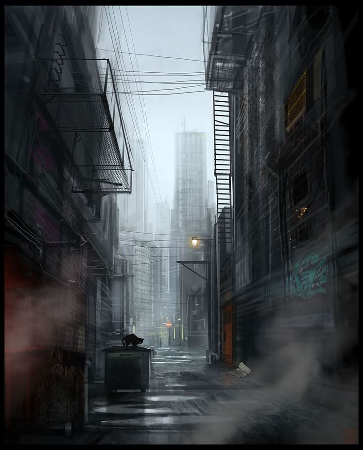 'The alleyway was narrow and littered with trash.'