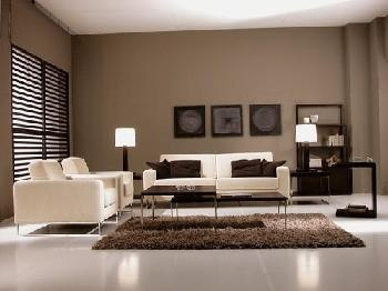 muebles blancos modernos y pared marron