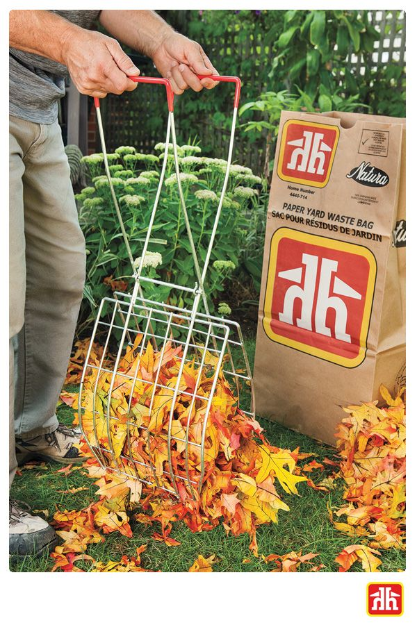 Make fall cleanup easy and pain free with waste scoops! They are perfect for collecting leaves without bending and hurting your back.