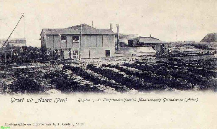 0210484_001 Coll. Chr. Warnar 1930: Turfstrooisel Fabriek. Moost Drielandenpunt Asten Someren Nederweert. Groeten uit Asten.