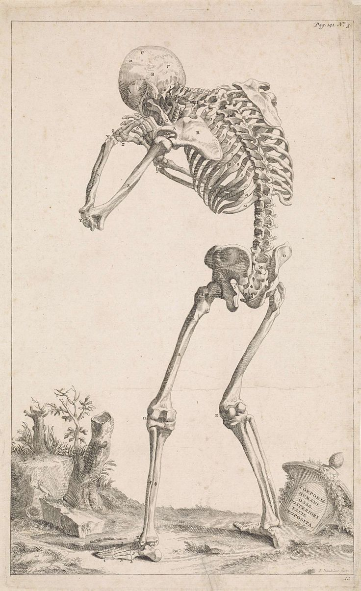 Jan Wandelaar   Landschap met skelet, Jan Wandelaar, 1725   Een menselijk skelet met een gebogen rug, van achteren gezien, in een landschap. Rechtsonder een antieke vaas waarop een opschrift in het Latijn.