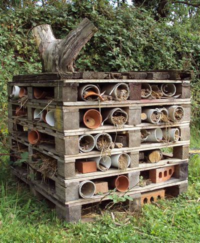 Habitats at Home – Thinking big with a mini-beast mansion | National Insect Week