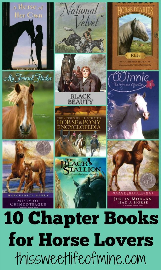 10 Chapter Books for Horse Lovers