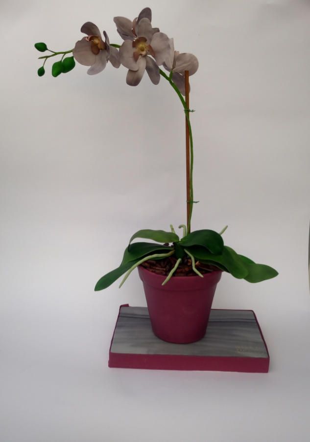 Orchid cake pot - Cake by mariana frascella