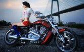 Image result for Girls On Harley-Davidson Motorcycles