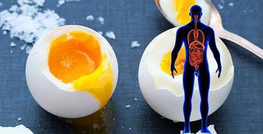 Ecco come cambia il tuo organismo se mangi 2 uova al giorno