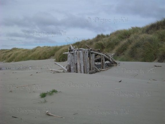 Oregon Coast Digital Download Image Shelter from the Storm