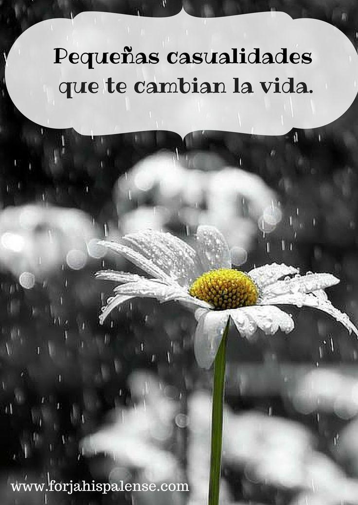 #frases #primavera #optimismo