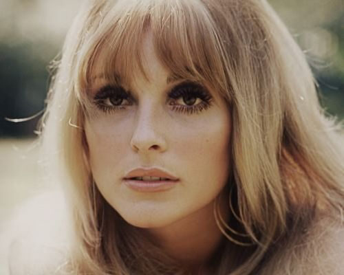 10 Murder Victims Who Aren't Resting In Peace - Sharon Tate, her friend Jay Seabring, a friend of Roman Polanski named Wojciech Frykowski and his girlfriend Abigail Folgers, were murdered by members of the Manson Family on August 9, 1969.