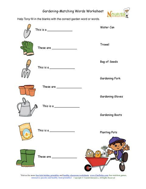 free health nutrition gardening worksheets gardening