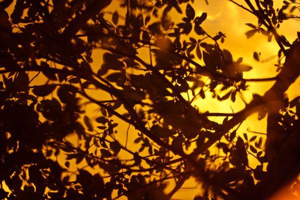 Prelúdio by Mariana David. www.marianadavid.com