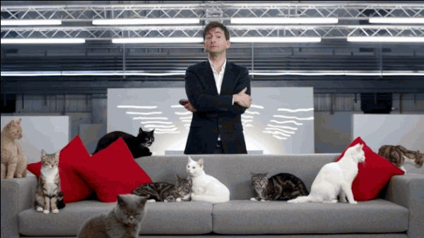 And then when he had so many cats the neighbors were afraid to come over. | 12 Pieces Of Proof David Tennant Is A Crazy Cat Lady