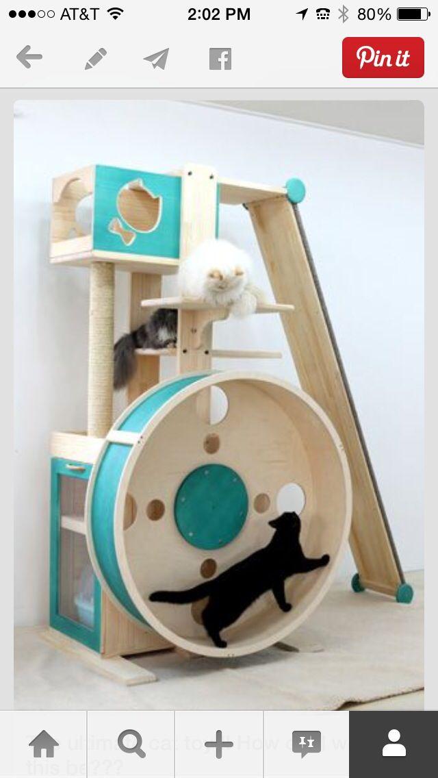 Cat Tower!                                                                                                                                                      Más