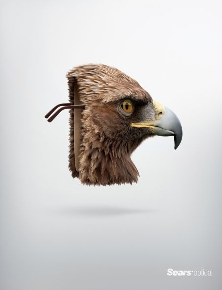 How do you use visual metaphor to illustrate a product/service benefit? Sears Optical: Eagle