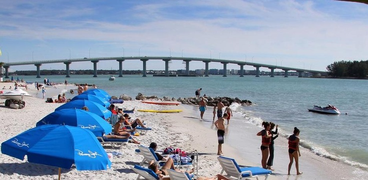 Tampa Florida Hotels On Beach Newatvs Info