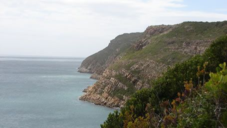 Hike Robberg and take in exquisite coastline and seals frolicking - Plettenberg Bay