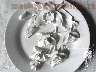Мастер-класс по лепке из холодного фарфора: Орхидея
