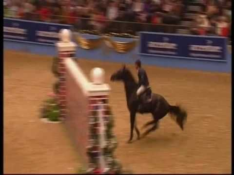 I don't like all the cuss words but I love the riding it's beautiful and I love how the horse get themselves reved up