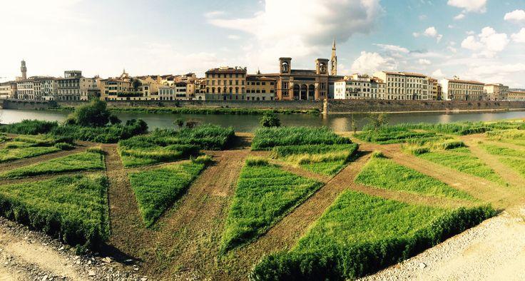 Terzo Giardino, Firenze riva D'Arno