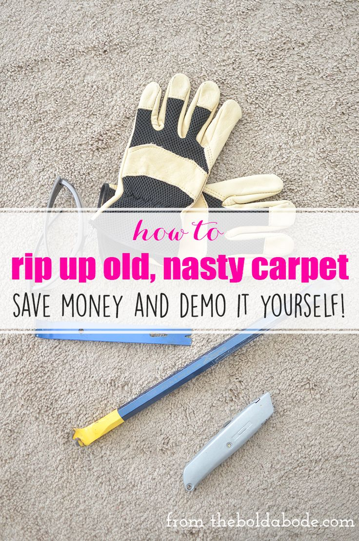 Laundry/Pantry: How to rip up carpet: Save money by doing the demo yourself! It's not hard at all!