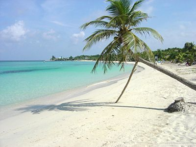 Utila, Honduras - not a bad place to end a day of placement!... Dreaming of elective!